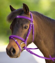 UNICORN BRIDLE 2